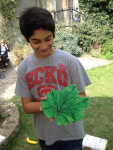 leaf-casting-sm